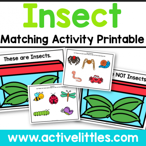 Insect Matching Activity Printable for kids - Active Littles
