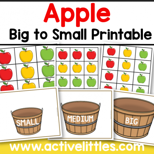 apple big to small printable preschool