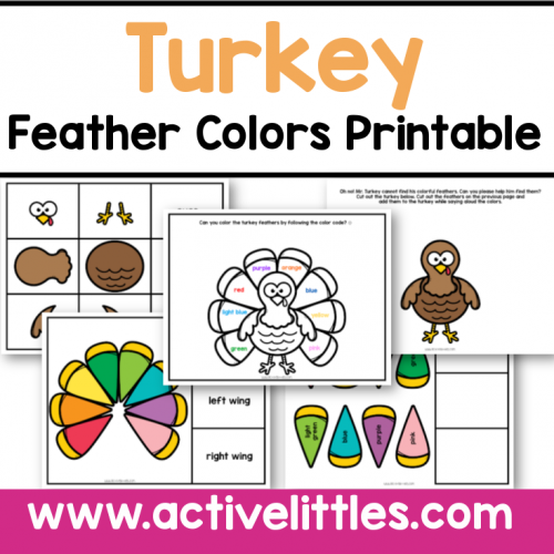turkey feathers color match printable