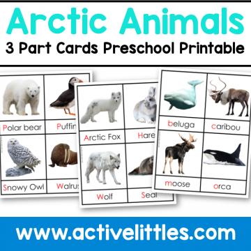 arctic animals 3 part cards preschool printable